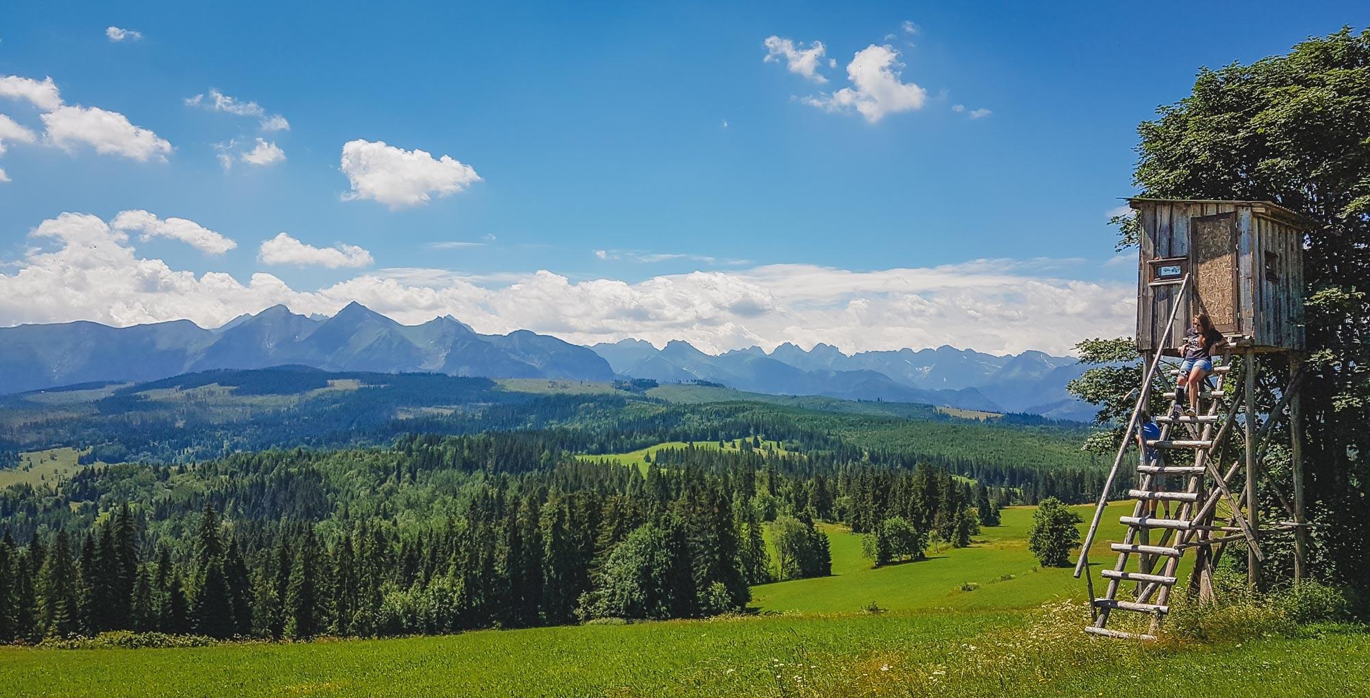 łapszanka panorama
